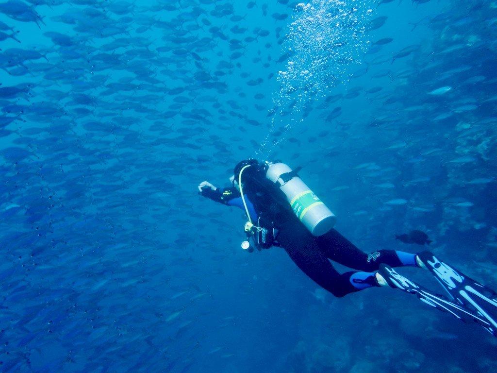 Plongeurs et plongeuses célibataires