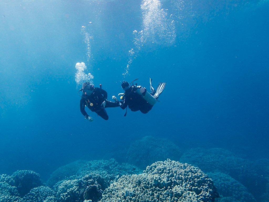 site de rencontre plongeurs